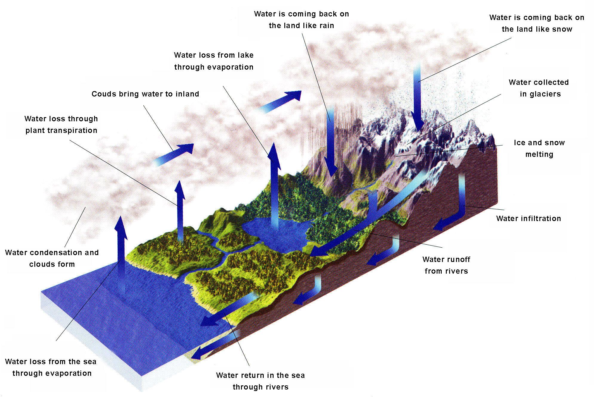 Круговорот воды в природе модель своими руками